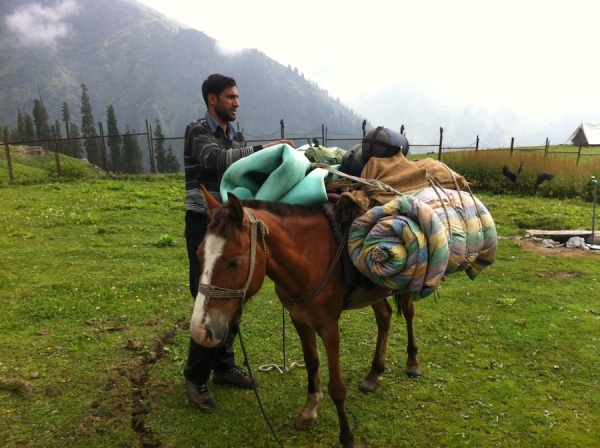 Trekking guide at Naranag - Kashmir