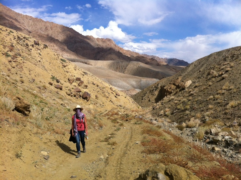 Himalayan Desert of Ladakh - The way to Tingmosgang